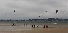 KitesAndCockles (Hodd1350) Tags: houses sea people sand harbour olympus shore dorset lowtide sandbanks poole windsurfers penf zuikolens