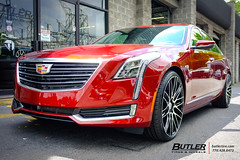 Cadillac CT6 with 22in Savini BM13 Wheels (Butler Tires and Wheels) Tags: cars car wheels cadillac tires vehicles vehicle rims savini ct6 saviniwheels butlertire butlertiresandwheels savinirims 22inrims 22inwheels cadillacwith22inwheels cadillacwith22inrims 22insaviniwheels 22insavinirims cadillacwithrims cadillacwithwheels cadillacct6 savinibm13 22insavinibm13wheels 22insavinibm13rims savinibm13wheels savinibm13rims cadillacct6with22insavinibm13wheels cadillacct6with22insavinibm13rims cadillacct6withsavinibm13wheels cadillacct6withsavinibm13rims cadillacct6with22inwheels cadillacct6with22inrims cadillacwith22insavinibm13wheels cadillacwith22insavinibm13rims cadillacwithsavinibm13wheels cadillacwithsavinibm13rims ct6with22insavinibm13wheels ct6with22insavinibm13rims ct6withsavinibm13wheels ct6withsavinibm13rims ct6with22inwheels ct6with22inrims cadillacct6withwheels cadillacct6withrims ct6withwheels ct6withrims