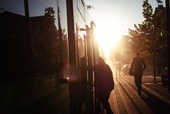 Dust Devils (ewitsoe) Tags: street city sunset urban woman sun man lady 35mm walking evening spring warm long shadows bright tram poland polska sunny pedestrian fridaynight peopel poznan sunight nikond80 chasinglight ewitsoe