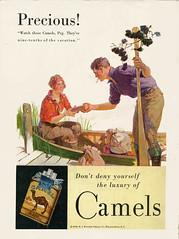 Vintage Camels Ad (1930) (BudCat14/Ross) Tags: vintageadvertising camels