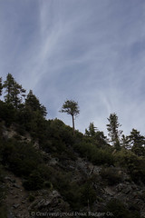 (daniel.hughley) Tags: camping hiking sangabrielmountains mtbaldy cran mtsanantonio mankerflats