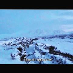Iceland Trip • อุทยานแห่งชาติ Thingvellir มรดกโลกขององค์การยูเนสโก .. เป็นอุทยานแห่งชาติของที่นี่ และเชื่อว่าเป็นที่ก่อตั้งรัฐสภาแห่งแรกของโลก .. ในอุทยานมีรอยแยกที่พื้นดิน เป็นเส้นแบ่งระหว่างทวีปยุโรปและอเมริกานะ #PuppyloveFilm
