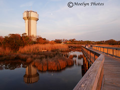 Magic Hour-Duck Bayside and Boardwalk (moelynphotos) Tags: sunset moon reflections island duck twilight flora watertower northcarolina boardwalk barrier marsh outerbanks magichour settingsun illuminates warmcolor landscapeformat moelynphotos