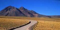 Desierto de Atacama (Made Bulkes) Tags: road mountain yellow volcano desert camino amarillo atacama desierto montaa volcan antofagasta desiertodeatacama atacamadesert