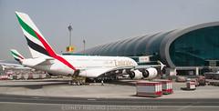 AIRBUS A380-800 (A6-EDY) EMIRATES AIRLINES | DUBAI | DXB-OMDB (Ediney Ribeiro) Tags: plane dubai emirates dxb planespotting