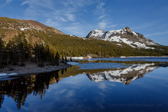 Tioga Lake (Jeffrey Sullivan) Tags: california park travel copyright usa west reflection jeff nature june canon landscape photography eos photo unitedstates entrance national yosemite sullivan sierranevada highsierra tiogapass 2016 leevining iceout tiogalake 5dmarkiii