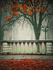 (mom_7) Tags: park garden sofia samsung bulgaria