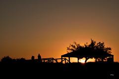 De vuelta (ZAP.M) Tags: espaa contraluz atardecer andaluca nikon flickr cdiz siluetas chiclana playas sanctipetri zapm nikond5300 mpazdelcerro