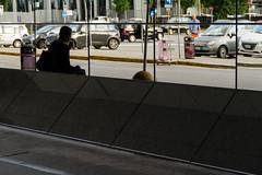 "back brick  #manchester #parade #uk #inghilterra #clod  #avventura #CombustaRevixi #corinaldo #sbandieratori #musici #amici #giugno2016 #streetphotography #canon #7d #LaLungaAttesa #sciopero #aereo #girl #reflectiongram #reflection (claudio ""clod"" giuliani) Tags: uk manchester streetphotography amici clod inghilterra corinaldo sbandieratori avventura musici combustarevixi paradeclodreflexcanon7duscitagruppostoricocombustarevixiavvenclodreflexcanon7duscitagruppostoricocombustarevixiavventuramilanoginevramanchesterukinghilterragiugno2016 giugno2016"