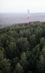 img500-2 (Shooting Film) Tags: film forest kodak 400 zenit 122 potra