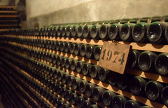 DSC_3937 (erinakirsch) Tags: italy castle landscape florence vineyard view wine vine winery vineyards views tuscany toscana grape grapevine florenceitaly frescobaldi winegrapes nipozzano