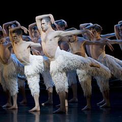 All Male Version of Swan Lake in 3D Showing in Los Angeles One Night Only (gaywesthollywood) Tags: gay news west los theatre angeles lgbt hollywood videos featured