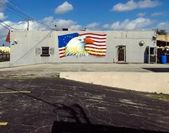 Pompano Beach, FL (Minno Ramirez) Tags: street usa streetart color building art architecture landscape mural downtown unitedstates eagle florida flag structure elements americana mundane emptiness urbanlandscape pompanobeach contemporarylandscape newtopographics