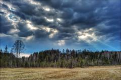 Sonnenstrahlen ber dem Wald (Helmut Reichelt) Tags: leica germany bavaria spring natur wolken wald hdr frhling m9 geretsried colorefexpro viveza voigtlandernokton35mmf14sc