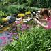Sensory Garden Photographer
