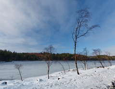 The last snow? (Hkon Kjllmoen, Norway) Tags: winter beautiful norway colorful bright naturepoetry flickrdiamond vormedal