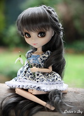 New girl  Ivy (pure_embers) Tags: uk flower green sisters garden ana eyes doll dolls gray royal ivy wig pullip pure snowdrop karina embers leeke obitsu leekeworld prupate
