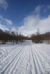 A good day for skiing (Mrscurlyhead) Tags: trees snow ski mountains nature norway clouds landscape skiing pov tracks sunny bluesky hemsedal skitracks sonydslra300 agooddayforskiing