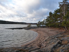 Sandy beach in Erstaviken (Hannes E.) Tags: winter sea beach water sweden balticsea baltic solsidan saltsjöbaden erstaviksbadet erstaviken saltis