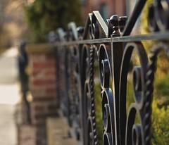 Wrought Iron Fence Bokeh (Pete A. McLeod) Tags: morning fence aperture dof bokeh wroughtiron depthoffield mcleod nikcolorefexpro nikkor50mm12 nikond7000 hazeltonaveyorkvilletorontoontariocanada