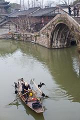 Wuzhen in spring rain (woOoly) Tags: china bridge boat fisherman ancient chinese  wuzhen oldtown sping zhejiang fishhawk   archbridge  zhongguo  wutown tongxiang  inrain yangtzeriverdelta xizha streetspeople   southernchineseriversidetown wuzheninrain wuzheninspingrain northofzhejiang