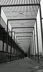Lines (pelnit) Tags: bw white black lines norway norge fair norwegian trade lillestrm norges linjer varemesse fotomesse pelnit