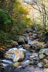 Autumn on the Tallulah River (John Cothron) Tags: autumn usa fall water leaves rock creek forest 35mm canon river georgia landscape stream clayton sunny flowing cpl freshwater afternoonlight scurve tallulahriver rabuncounty chattahoocheeoconeenationalforest tallulahriverroad johncothron 5dmkii cothronphotography zeissmakroplanart250mmze img05834111015