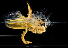 The Dancing Banana (bgspix) Tags: fruits vegetables canon diy interesting banana fishtank splash sundays dancingbanana strobist 60d 430exii yonguo benjamings strobistsundays diypfav sundayphotography bgsphotography bgspix