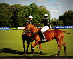 117th Hurlingham Club Open Championship, Argentina / 117 Abierto de Hurlingham YPF () Tags: vacation horse holiday game latinamerica southamerica argentina argentine cheval nikon posh expensive 70300mm sportsaction polo rtw vacanze hest porteos roundtheworld paard sudamerica  amricadosul amricalatina globetrotter zonasul ypf polomatch  poloclub argentinien liveevent 16days  hurlingham equidae onhorseback amricadelsur polofield sdamerika zonea hurlinghamclub worldtraveler  brownhorse repblicaargentina  etiquetanegra chukkas argentinidad pologame poloteam d700  zonaa nikond700 chapauno  chukkers ellerstina abiertodehurlingham    triplecorona hopefunds 117thhurlinghamopen hurlinghamopen ellerstinaetiquetanegra chukers tradiciondelpoloargentino  ellerstinanegra yrariannin
