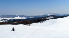 március a Rozsályon / March in the mountains (debreczeniemoke) Tags: winter snow mountains landscape march view március tájkép gutin hó tél hegyek kilátás rozsály canonpowershotsx20is igniş