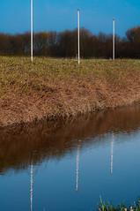 Up + down = 0 (glukorizon) Tags: blue white plant reflection tree grass three bush blauw boom number saturation gras flagpole wit odc reflectie struik drie spiegeling upanddown verzadiging getal vlaggenmast odc2 ourdailychallenge