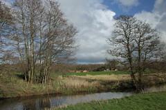 Lieversche Diep (RTV Drenthe - foto's) Tags: winter lente drenthe weer rtv weerfoto