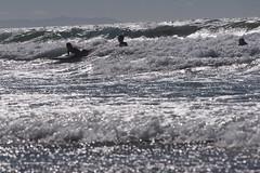 Surfing_TW04_ph1_2766 (TechweekInc) Tags: santa city beach la los tech angeles fair surfing event monica innovation tw techweek 2015