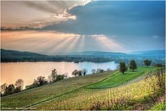 Abendstimmung Sempachersee (Hanspeter Ryser) Tags: sunset sun lake art see spring sonnenuntergang wolken rays sonnenstrahlen stimmung frhling abendstimmung vogelsang sempachersee sursee landcap
