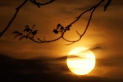 I forgot this sunset :-) (patbeeck) Tags: hanks petehuu tamron70300vcusd sonyslta58 jooka500