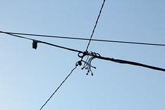 es war ihr als wre sie in einer riesige Verschlingung gefangen (raumoberbayern) Tags: blue sky abstract black heaven himmel tram cable minimal latvia blau schwarz riga kabel lettland robbbilder urbanfragments strasenbahn