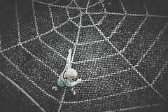 The Incredible. (SaltyDogPhoto) Tags: boy playing kids children photography kid nikon toddler child play spiderweb fromabove ropes lookingdown nikkor dslr nikonphotography oregondairy nikond7200 saltydogphoto nikkor1680mmf284eedvr strangepov
