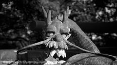 The dragon (pons5607_3) Tags: japan photography blackwhite dragon sony myth ilca77m2