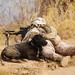 Marines sweep uncharted areas of Khan-Neshin during Operation Highland Thunder [Image 1 of 11]