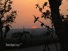 IMG_0283 (Tarun Chopra) Tags: trees nature canon photography landmarks nopeople powershot gurgaon s100 orangecolor suneset electricpoles hightensionwires canonpowershots100