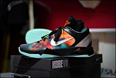 Nike Kobe 7 Galaxy All Star Game Shoe (Never Wear Them) Tags: orange black game green basketball silver dark star shoes all glow metallic space 7 nike system nasa kobe galaxy galaxies bryant allstar asg vii niketalk gitd foamposite galaxys kobesystem nikekobegalaxy kobegalaxy