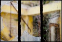 Detail (Joel Leclercq) Tags: cinema ruines urbex varia batiments