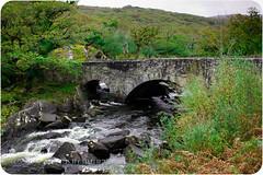 Killarney (Robzy...) Tags: uk ireland dublin irish green canon killarney dslr blarneycastle photgraphy blarneystone leprechaun ringofkerry
