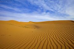 The Desert (TARIQ-M) Tags: sky cloud texture landscape sand waves pattern desert patterns dunes wave riyadh saudiarabia بر الصحراء canoneos5d الرياض سماء غيوم صحراء رمال سحب سحابة رمل طعس كانون المملكةالعربيةالسعودية غيمة الرمل خطوط صحاري ef1635mmf28liiusm canoneos5dmarkii نفود الرمال كثبان براري تموجات تموج نفد ripplesripple