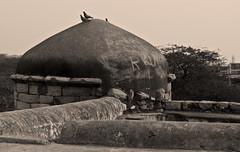 cross (parth joshi) Tags: history delhi monuments iltutmish delhisultanate slavedynasty corbelarch sultangharistomb