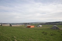 20120328_HEL3798 (hughlook) Tags: orange green field scotland containers sanquhar a76 dumfriesandgalloway scottishborders uniglory gatesidefarm dumfriesaqndgalloway