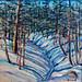 Nancy Brossard - Through the Woods