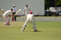 tokina cricket 026 (mushu2011) Tags: cricket redlands atx300afpro
