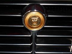 1973 Jaguar E-Type V12 S3 Drophead 5.3-litre - radiator badge (Transaxle (alias Toprope)) Tags: auto red berlin classic cars beauty car sport vintage 1974 1971 nikon power antique dream convertible cigar voiture historic coche soul carros topless classics 1975 carro oldtimer jag jaguar autos 1970s veteran 1972 s3 cabrio 車 macchina 1973 antiguo coches veterans clasico ots sportscar voitures toprope roadster cabriolet etype v12 remise seriesiii sportcar meilenwerk mk3 macchine dreamcar droptop drophead altmoabit descapotable kraftfahrzeuge السيارات kraftwagen 53litre wiebestrasse