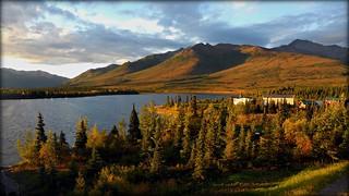 Alaska - Just outside Denali National Park - landscape